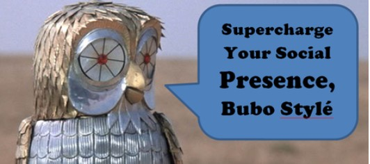 Bubo Owl & Hootsuite